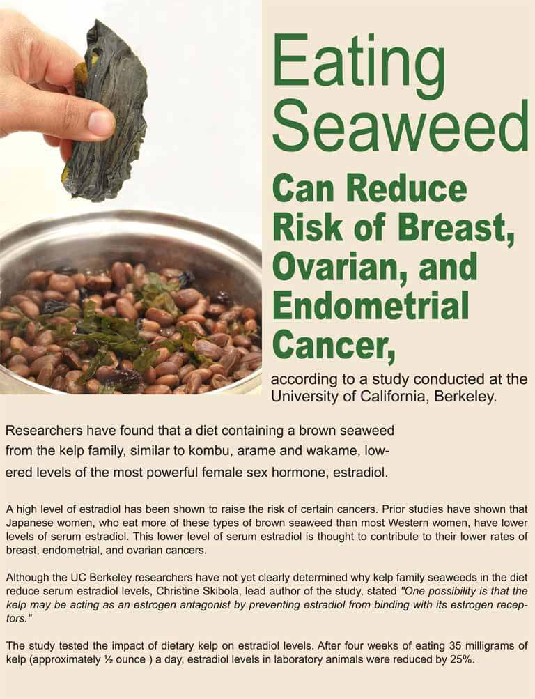 Berkeley Study Eating Seaweed Can Reduce Risk Of Breast Ovarian And Endometrial Cancer Great Eastern Sun