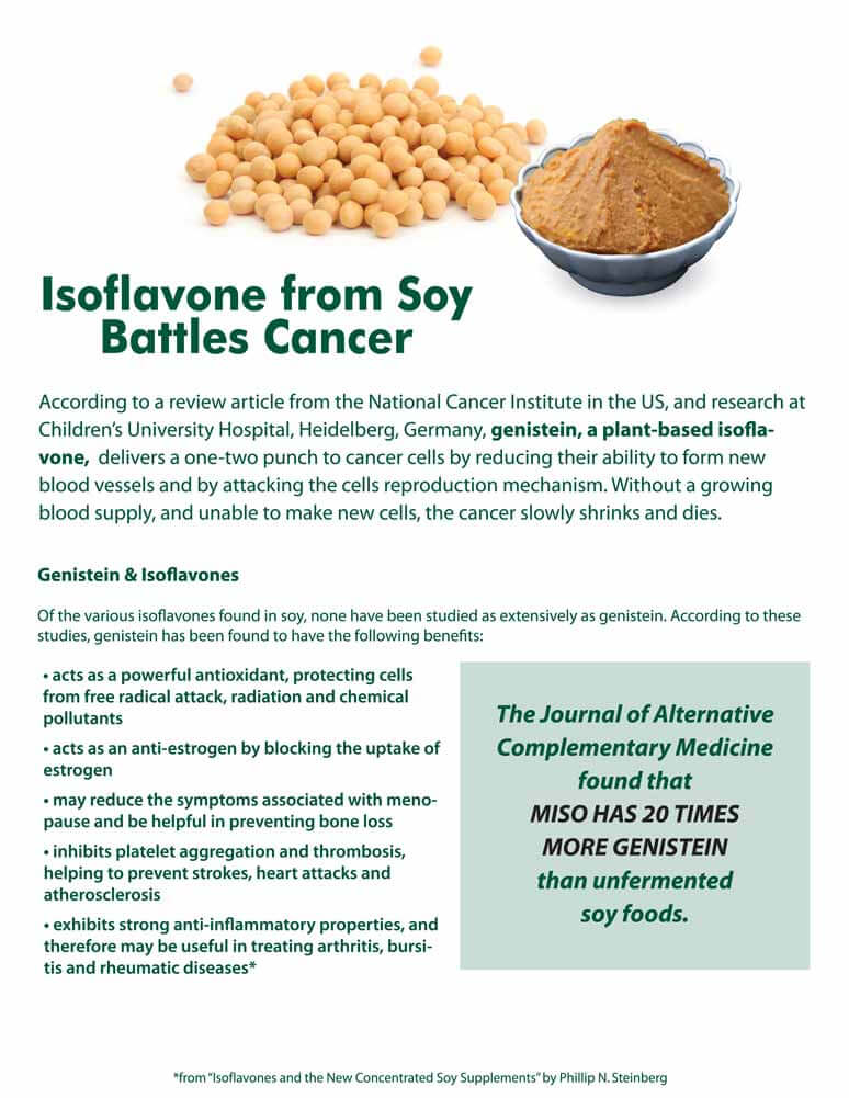 isoflavone-from-soy-battles-cancer-study