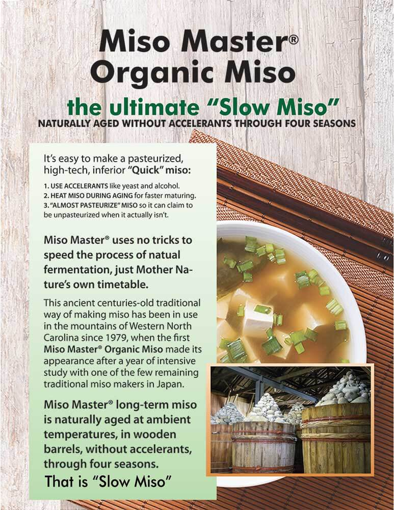 miso-master-the-slow-miso-flyer