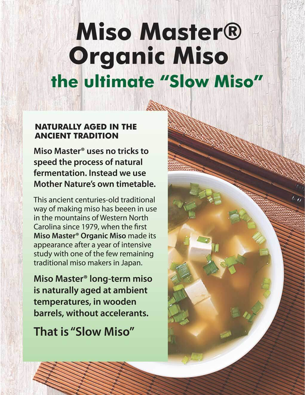 Miso Master the Slow Miso Flyer